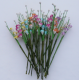 Pack 5 flores gypsophila